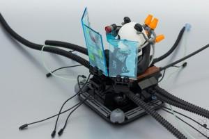 Cyberpandae-re-edit-7
